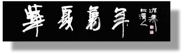 中国艺术领航人物—鲁振汉范曾专题报道